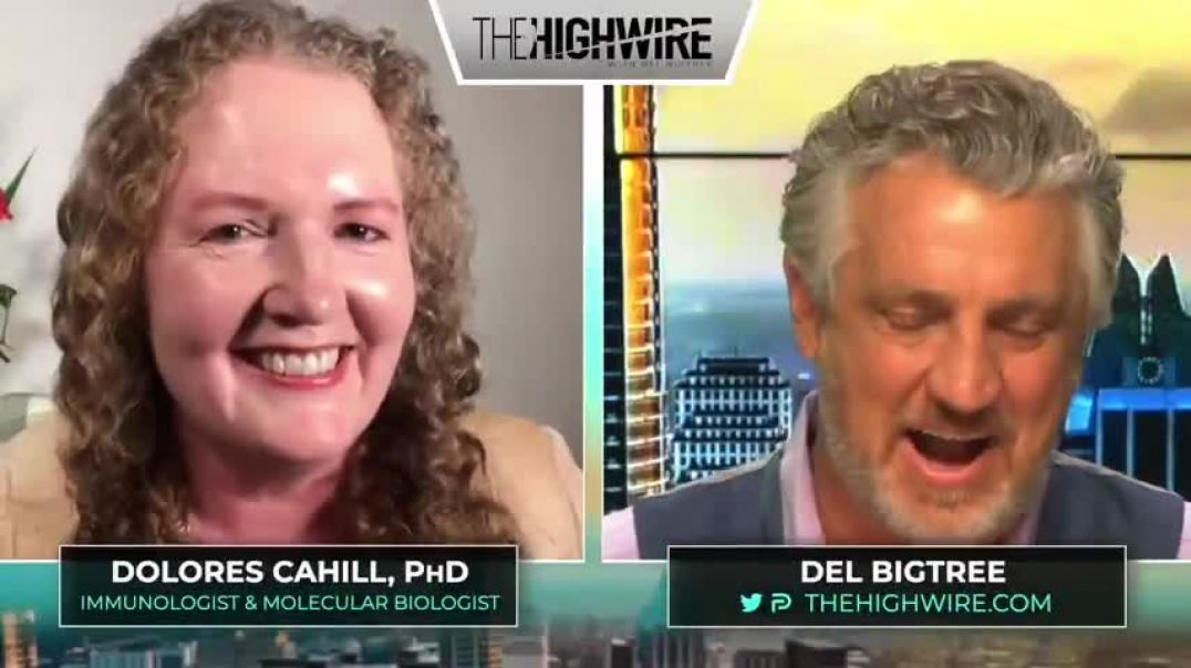Del Bigtree With Dolores Cahill, Phd - Stand Up To Tyranny