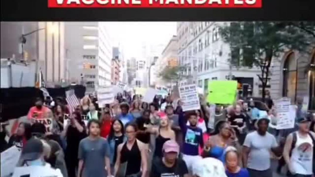 BLM & Trump supporters march together! f**k knows whats going on here just need lbgtq lol