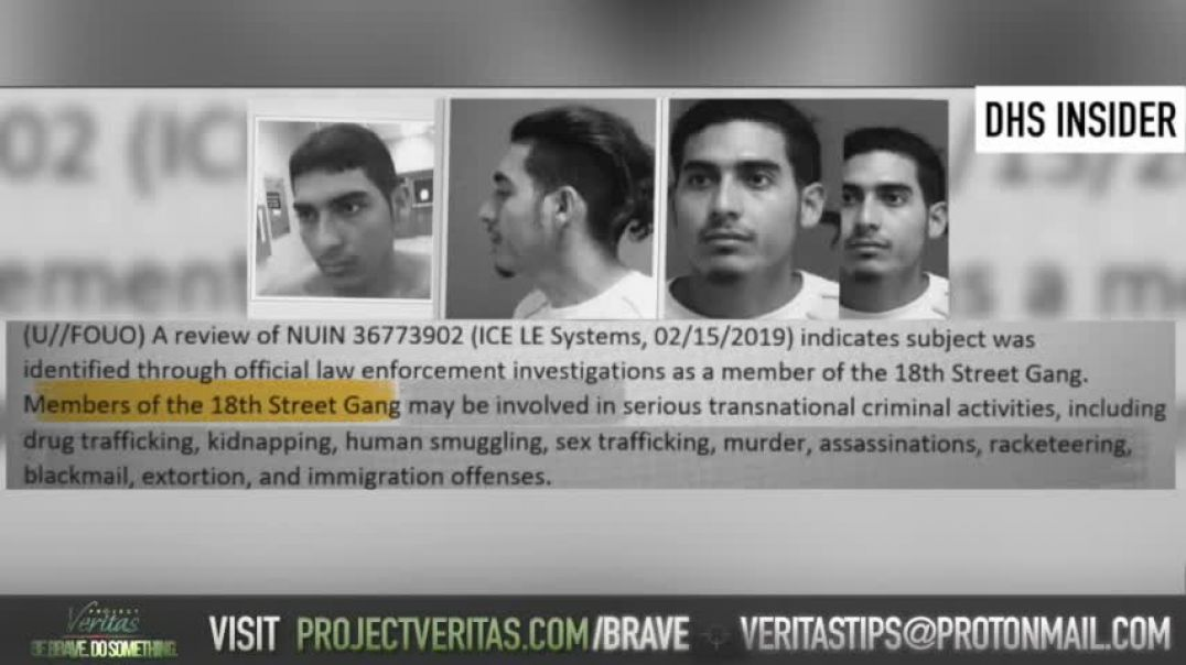 Project Veritas: DHS insider who exposed 'Reasonable Fear' goes public