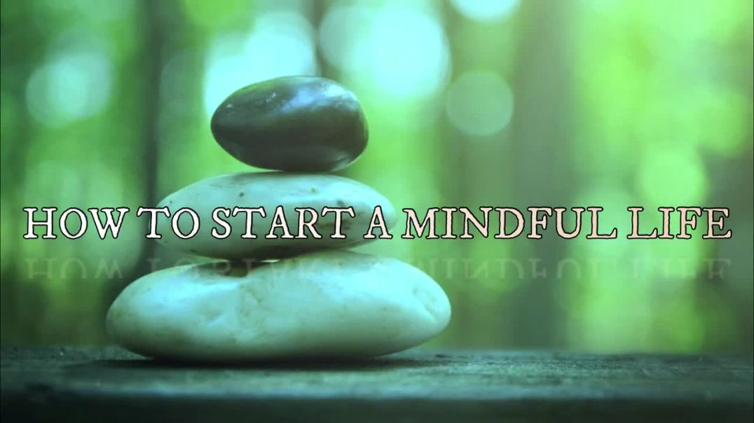 2 HOW TO START A MINDFUL LIFE