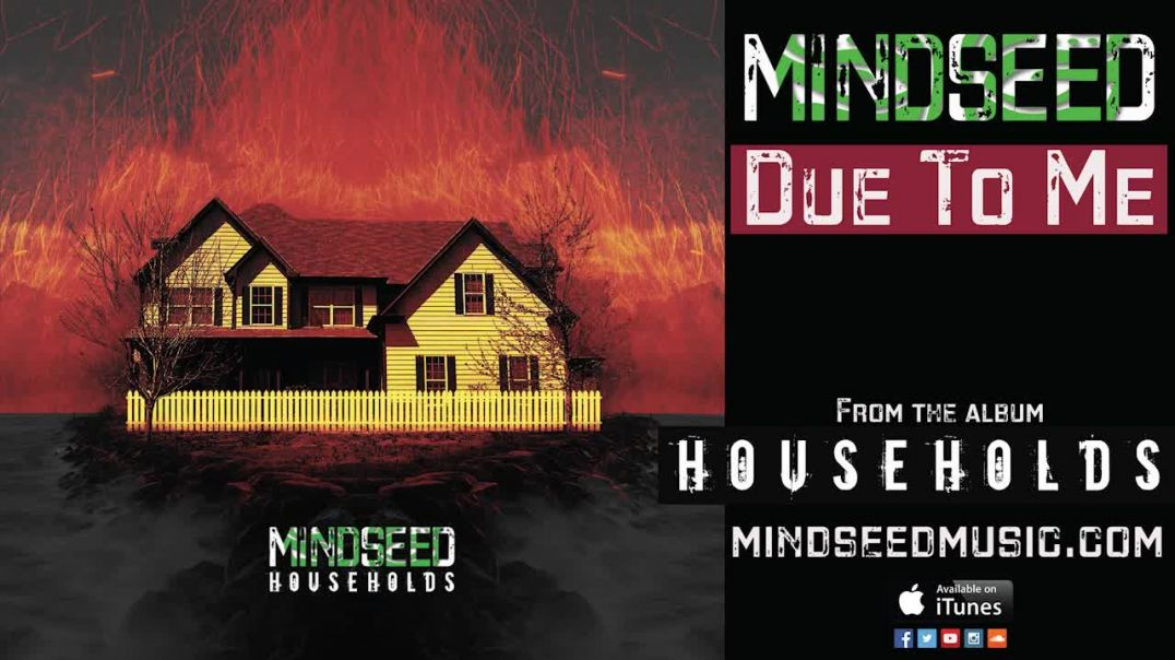 MINDSEED - Due To Me (Audio)